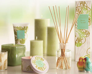 Candles & Diffures